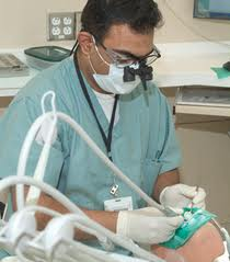 Affordable Dental Insurance